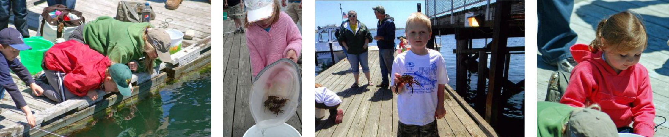 Webhannet River Boatyard - For Families - Crabbing